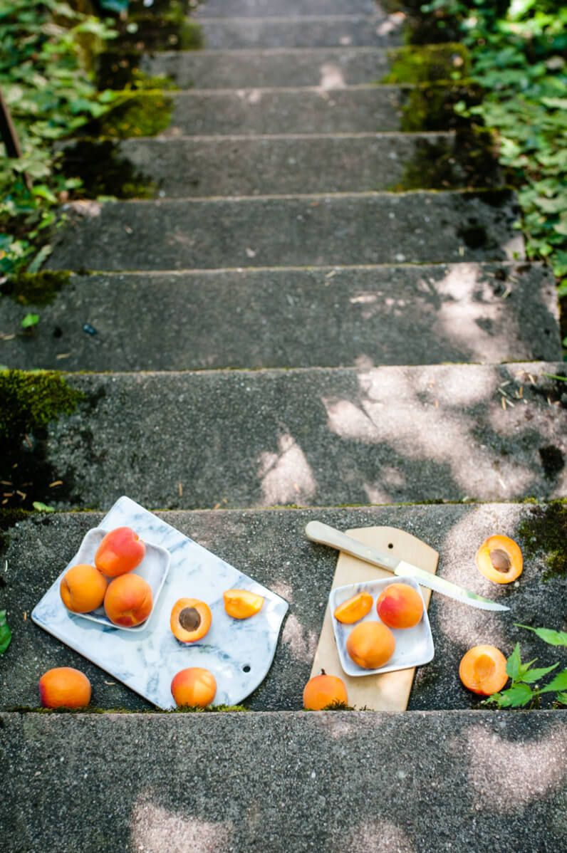 griechischer joghurt popsicles mit kardamom und gerösteten aprikosen