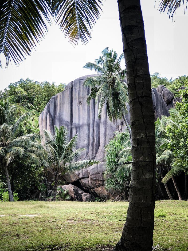 seychellen inselhopping trickytine katamaran