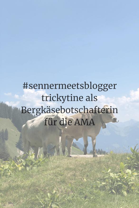 Kundenprojekt #sennermeetsblogger neu
