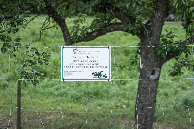 Geniesserland trickytine Hohenlohe Bauland Foodblog visitbawu