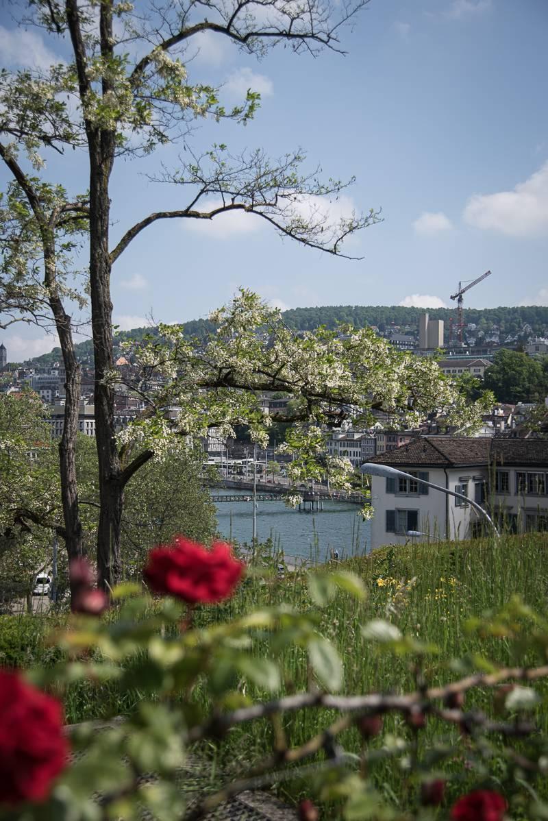 Zürich Reisetipps Sommer trickytine Aussichten