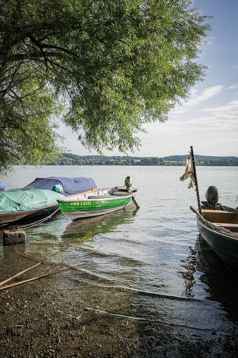 trickytine Insel Reichenau Bodensee