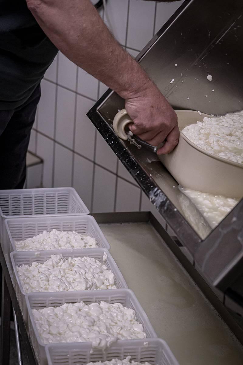 Oberstdorf kulinarisch trickytine Ziegenkäse