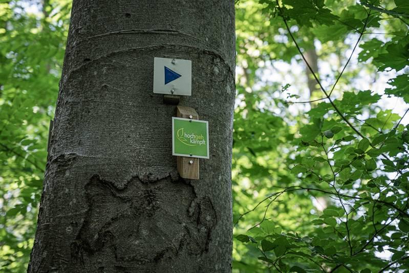 Wandern Stuttgart Region Gönningen hochgehkämpft trickytine