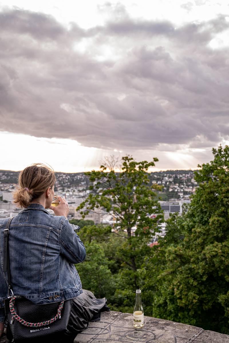 Stuttgart-Ost Tour trickytine Uhlandshöhe Aussichtsplatz