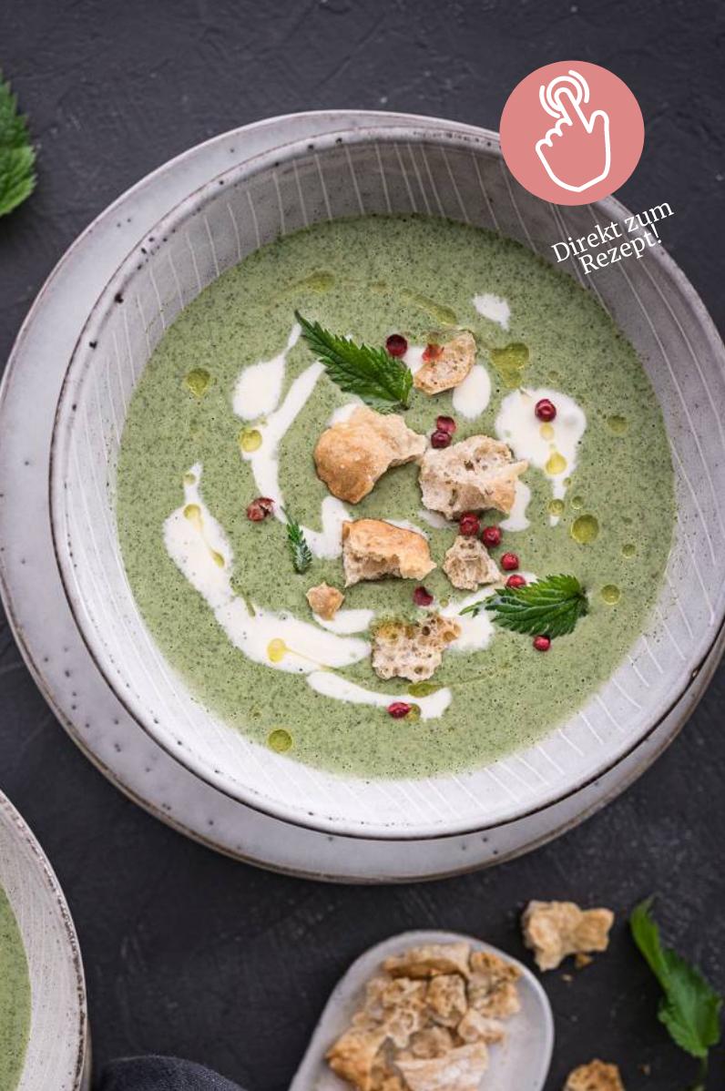 5 Suppen-Rezepte, Brennnessel-Suppe